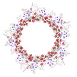 Detailed contour wreath with bluebells, carnations and wild flowers isolated on white. Round frame for your design. Greeting cards, announcements, posters Royalty Free Stock Photo