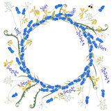 Detailed contour wreath with muscari and primrose Royalty Free Stock Image