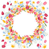 Detailed contour wreath with tulips and daffodils Stock Image