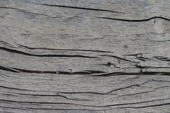 Aged Wooden Plank. Detailed and cracked aged wooden plank royalty free stock photo