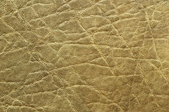 Detailed elephant pelt texture. Detailed african elephant pelt texture, animal real leather Royalty Free Stock Photos