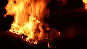 Detailed fire background stock footage