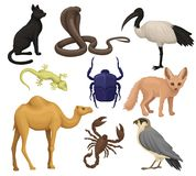 Detailed flat vector set of various Egyptian animals, birds and insects. Ibis, fennec fox, scarab beetle, small-spotted vector illustration