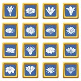Detailed flower icons set blue square vector. Detailed flower icons set vector blue square isolated on white background Stock Photos