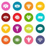 Detailed flower icons set colorful circles vector. Detailed flower icons set vector colorful circles isolated on white background Stock Photo