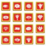 Detailed flower icons set red square vector. Detailed flower icons set vector red square isolated on white background Stock Image
