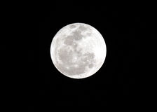 Detailed full moon Royalty Free Stock Images