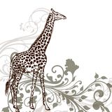 Detailed giraffe animal in engraved style Stock Photo