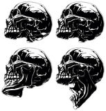 Detailed graphic skull in profile projection set Stock Image