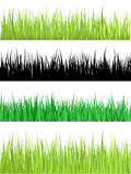Detailed grass Stock Photo