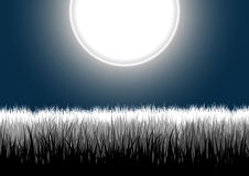Detailed grass leaves on a night moon sky. Vector illustration of four highly-detailed separated groups of grass outlines on a gradient white moon night sky Stock Photo