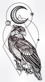 Detailed hand drawn bird of prey. Royalty Free Stock Images