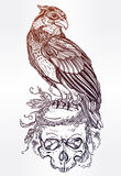 Detailed hand drawn bird of prey on a skull. Royalty Free Stock Images
