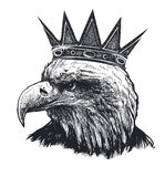 Detailed hand drawn eagle Stock Photos