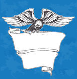 Detailed Hand Drawn Eagle Holding ribbon Royalty Free Stock Image