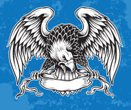 Detailed Hand Drawn Eagle. Holding Scroll Vector Stock Images
