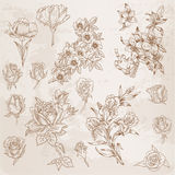 Detailed Hand Drawn Flowers Stock Photos