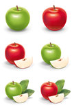 Apple collection illustrations Royalty Free Stock Image