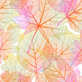 Detailed leaves seamless background. EPS 10 Royalty Free Stock Images