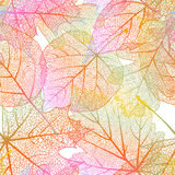 Detailed leaves seamless background. EPS 10 Stock Images
