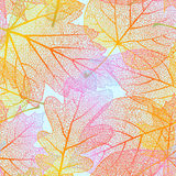Detailed leaves seamless background. EPS 10 Stock Image