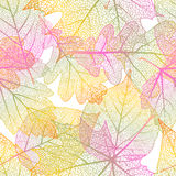 Detailed leaves seamless background. EPS 10 Stock Photos