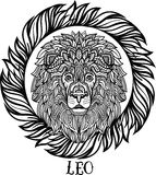 Detailed Lion in aztec style Stock Photos