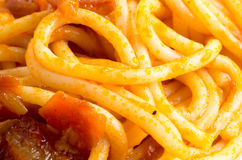 Detailed macro image of cooked spaghetti with sauce Royalty Free Stock Photos