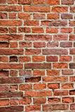 Detailed old red brick wall Royalty Free Stock Image