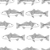 Detailed ornamental sketch of a fish.seamless pattern. Stock Photos