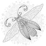 Detailed ornamental sketch of a moth Stock Image