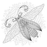 Detailed ornamental sketch of a moth Royalty Free Stock Photography