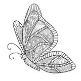 Detailed ornamental sketch of a moth. Hand drawn zentangle for adult anti stress. Coloring page with high details  on white background. Zentangle pattern for Stock Image