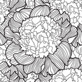 Detailed ornamental sketch of seamless flowers. Hand drawn for adult anti stress. Coloring page with high details  on white background. pattern for relax and Stock Photography