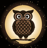 Detailed owl night. Owl Perching at night, brown bird. With moon and stars  illustration Stock Images