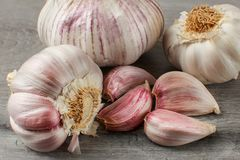 Detailed photo of garlic bulbs, and purple cloves on gray woode. Table Royalty Free Stock Images
