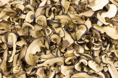 Detailed photos of dried mushrooms and boletus Stock Photos
