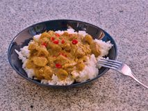 Detailed Picture of typical indian food hot lamb curry with rice and chopped chili served on the deep plate Royalty Free Stock Images