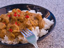 Detailed Picture of typical indian food hot lamb curry with rice and chopped chili served on the deep plate Stock Image