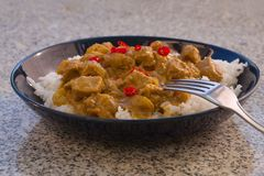 Detailed Picture of typical indian food hot lamb curry with rice and chopped chili served on the deep plate Stock Images
