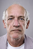 Detailed Portrait Royalty Free Stock Photo