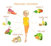 Detailed pregnancy nutrition infographic. Pregnancy nutrition infographic with pregnant woman and food. Vitamins and minerals for healthy nutrition. Healthy food stock illustration