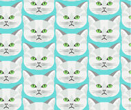 Detailed realistic hand drawn british cat portrait. Vector illustration. Set of isolated drawing kitten heads and faces some breeds. Used for wallpaper, web Stock Photos