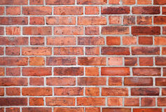 Detailed red brick wall background texture Royalty Free Stock Images