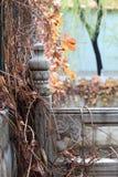 Detailed scenenry of reverside handrail. Handrail of river in Tsinghua University in autumn royalty free stock photo