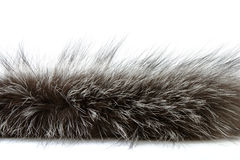 Detailed shot of fur. Isolated on white Royalty Free Stock Photos