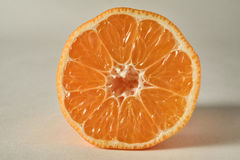 Detailed sliced orange Stock Image