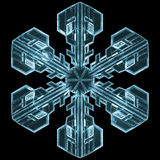Detailed Snowflake Stock Photography