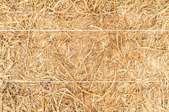 Detailed stack of hay Royalty Free Stock Photo