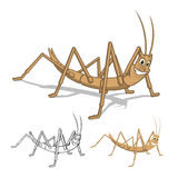 Detailed Stick Insect Cartoon Character with Flat Design and Line Art Black and White Version Royalty Free Stock Image